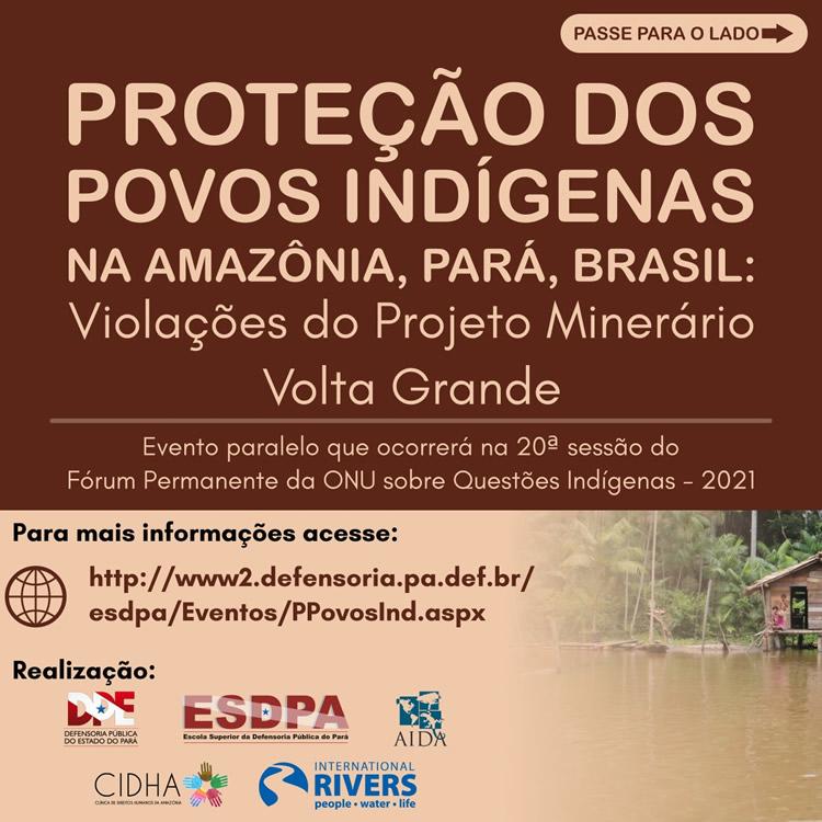 Proteção dos Povos Indígenas na Amazônia